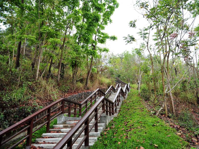 【景點】高雄旗山百年鼓山公園 自然生態資源豐